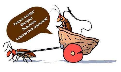 6 наименований отпугивателей тараканов — есть ли смысл их покупать?