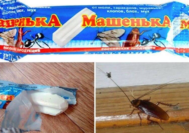 Мелок машенька от клопов – доступное средство от проблем с насекомыми