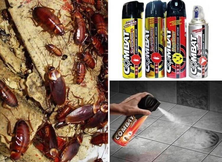 Обзор различных средств комбат от тараканов