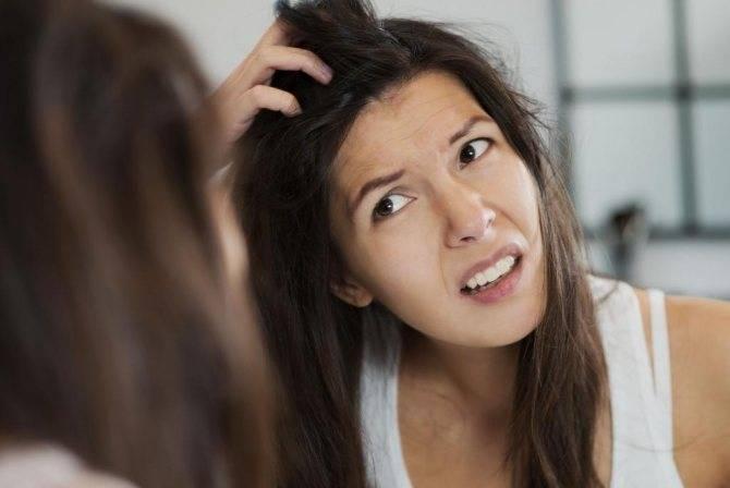 Может ли чесаться голова, если нет педикулеза?