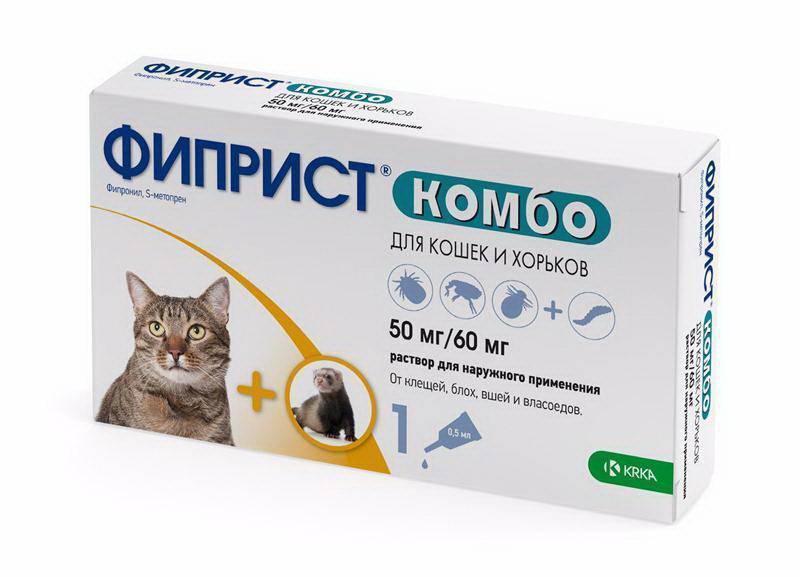 Как вывести вшей у кошек