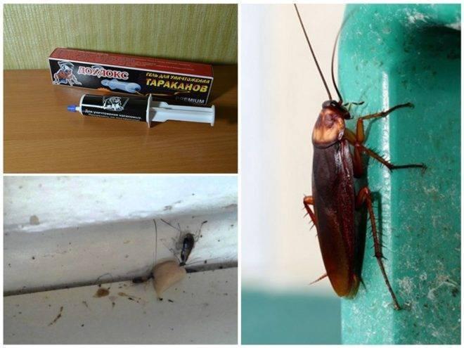 Гель великий воин от тараканов