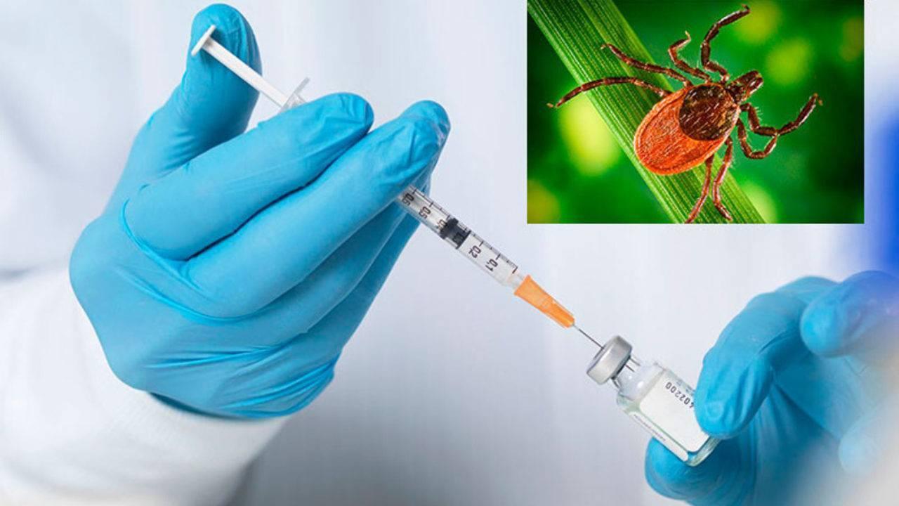 Прививка от клещевого энцефалита в москве