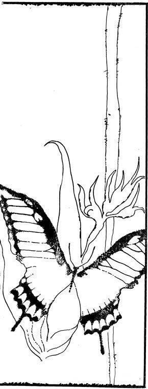 Бабочка подалирий: редкий и прекрасный гость садов и парков