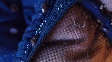 Клопы в одежде: как обнаружить и избавиться от вредителей