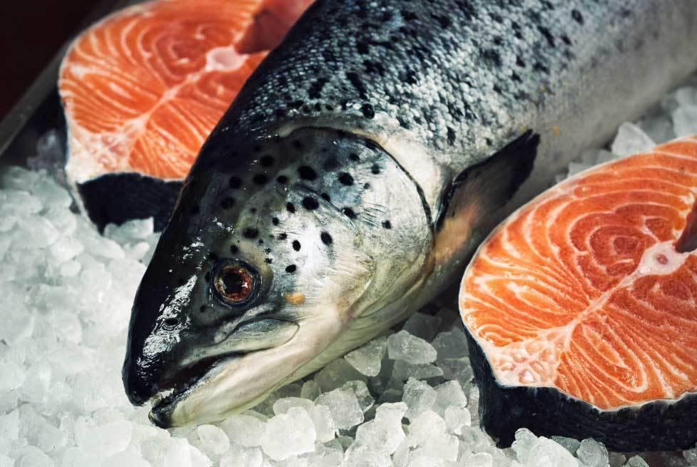 Какие паразиты встречаются в рыбе?