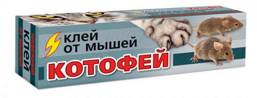 Чем отмыть клей для мышей с рук