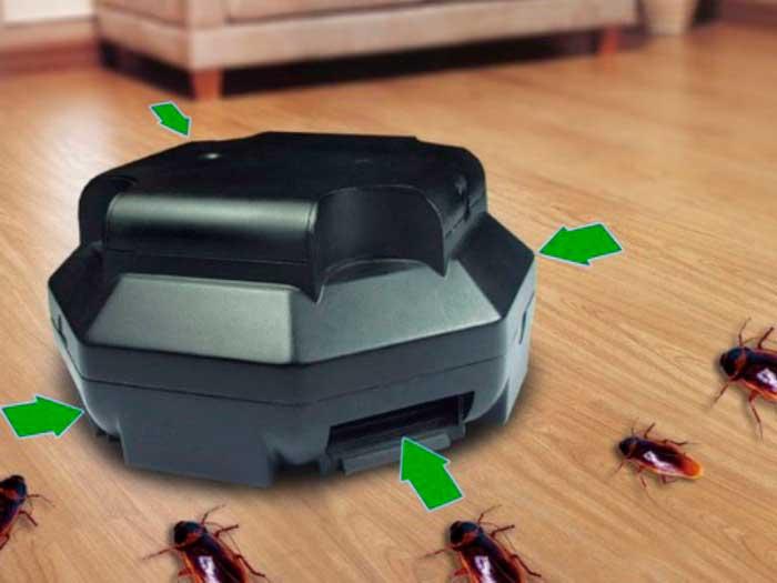 Ловушки для тараканов — обзор, оценка эффективности