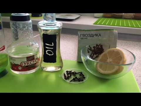 Обзор народных средств от комаров и мошек на природе