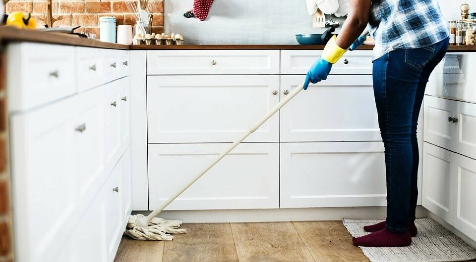 Как избавиться от мошек в квартире в домашних условиях