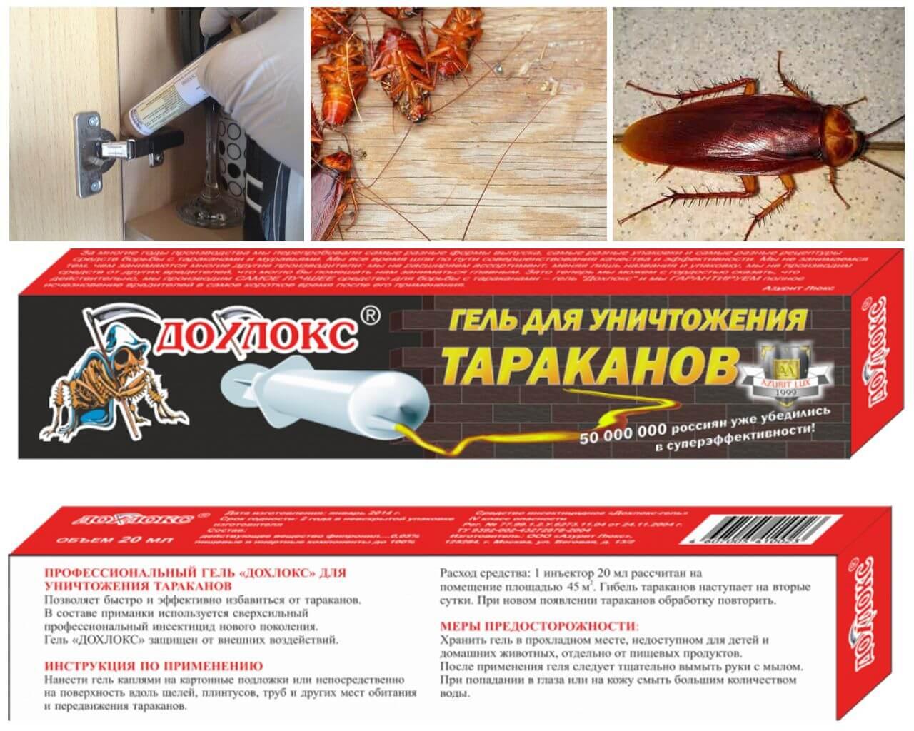Инсектицидный гель дохлокс от тараканов