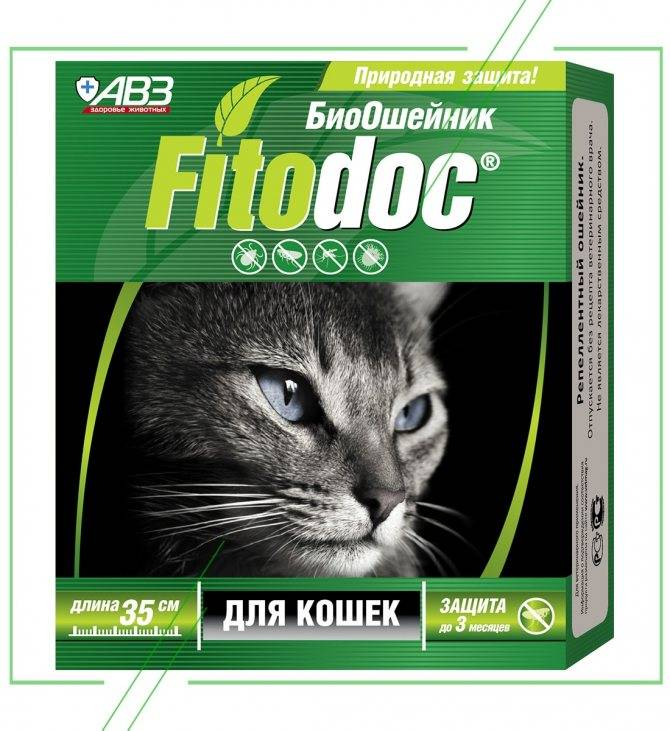 Что лучше для кошек и собак от клещей ошейник или капли
