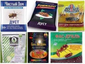 Самое лучшее и эффективное средство от тараканов в квартире – какое выбрать?