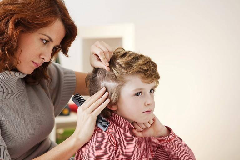 Профилактика педикулеза у детей и взрослых в домашних условиях