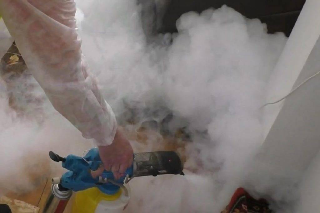 Обработка холодным и горячим туманом от клопов