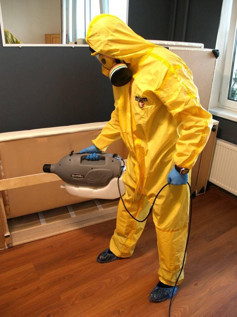 Как проходит санобработка от клопов в доме