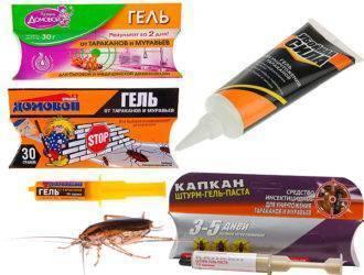 Народные средства от паразитов – рецепты и лечение