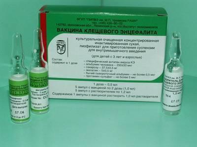 Вакцинация против клещевого энцефалита: как её проводят и зачем она нужна?