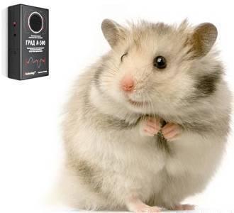 Ультразвуковой отпугиватель мышей и крыс: отзывы