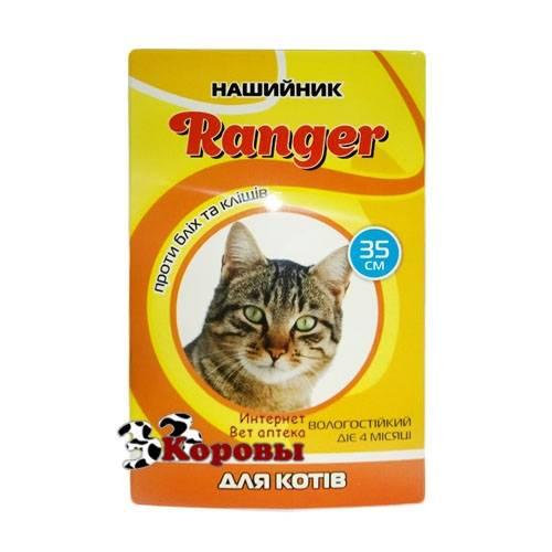 Обзор средств от клещей для кошек