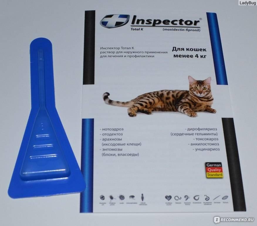 Капли инспектор для кошек – описание и инструкция