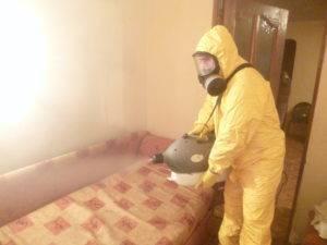 Подготовка и обработка квартиры от клопов дезинсекционной службой