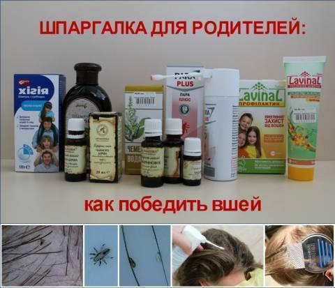 Опасность лобковых вшей