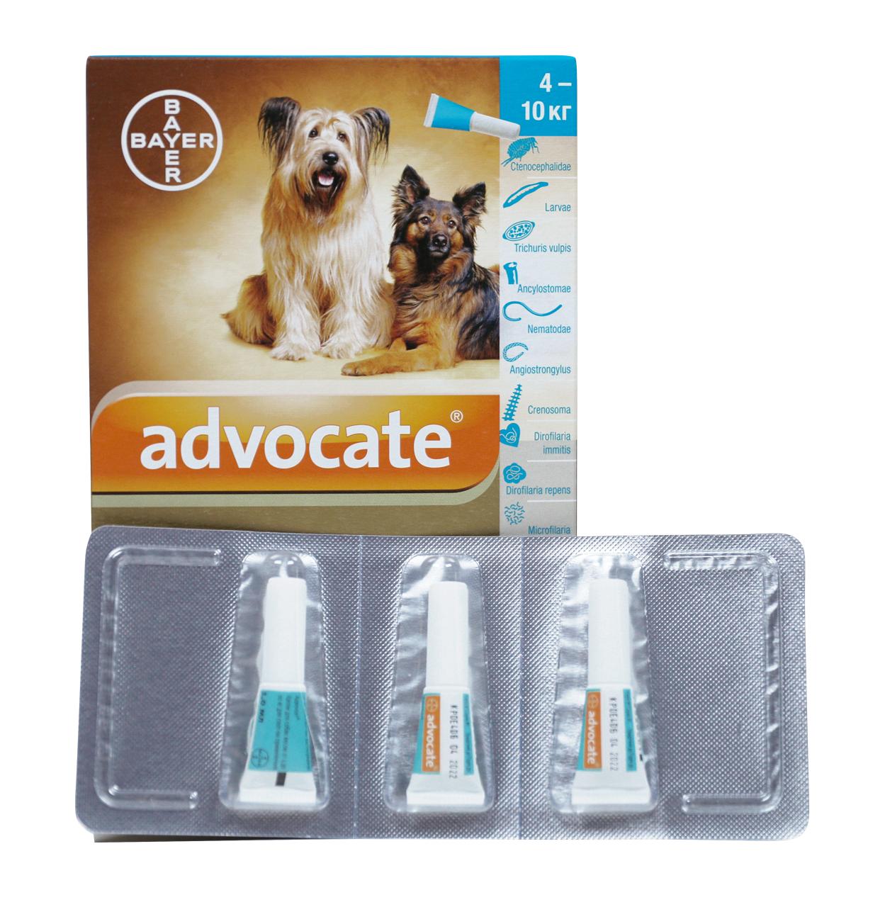 """Капли """"адвокат"""" для собак: инструкция по применению и отзывы"""
