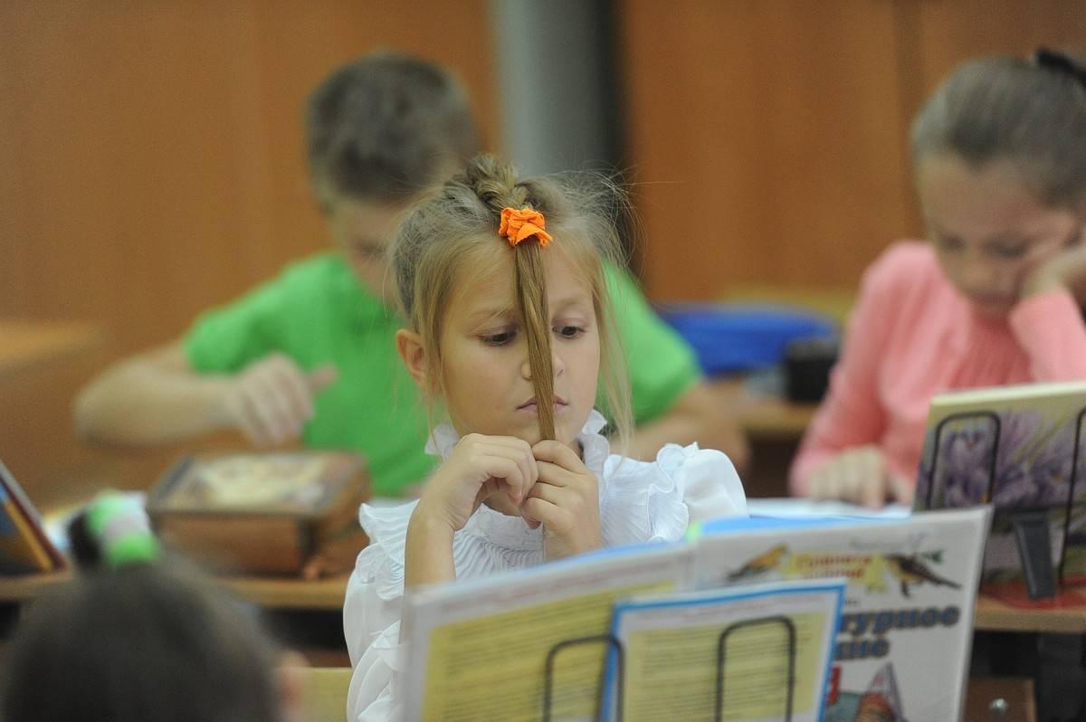 Вши в детском саду – что делать и нужно ли куда-то жаловаться?