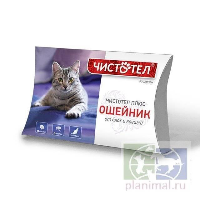 Капли для кошек «чистотел» от блох: инструкция
