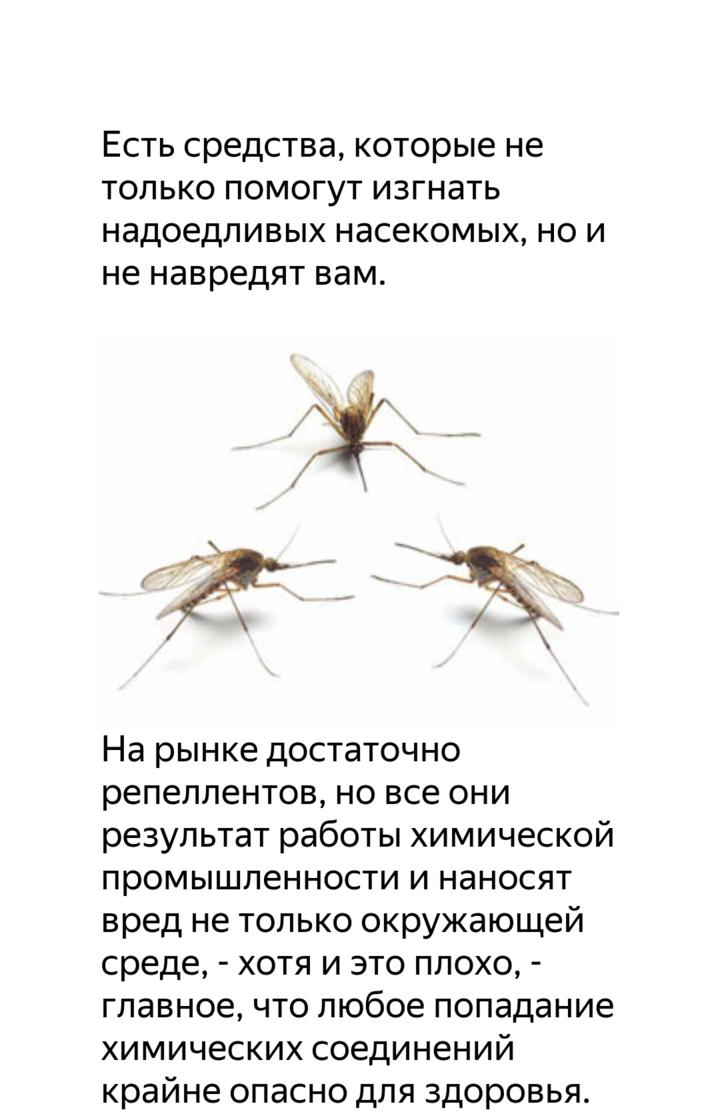 Какие эфирные масла отпугивают комаров