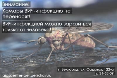 Можно ли заразиться вич при укусе комара: мнение врачей