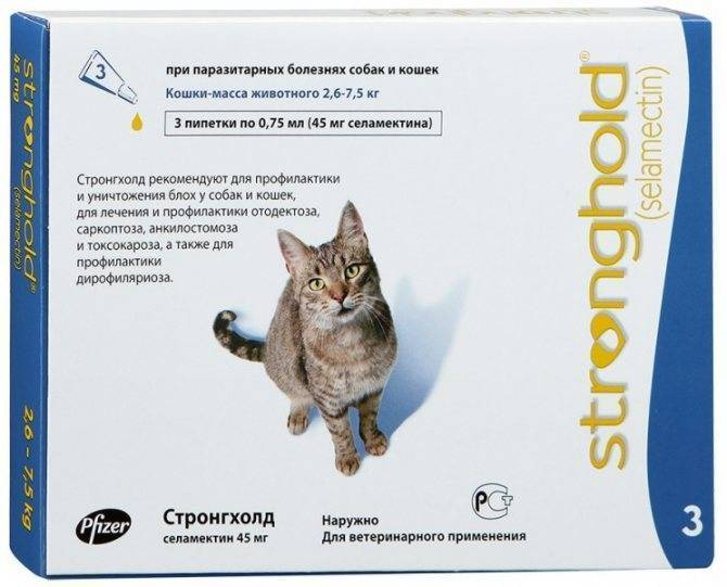 Лучшие капли на холку для кошек от блох и клещей