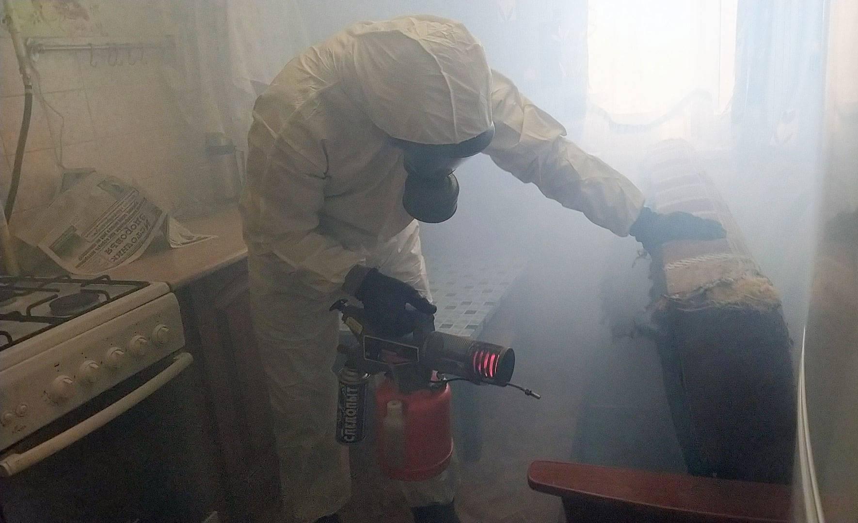 Уничтожение клопов горячим туманом: принцип действия, отзывы потребителей