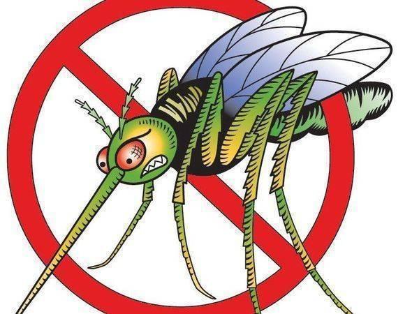 Народные средства против комаров