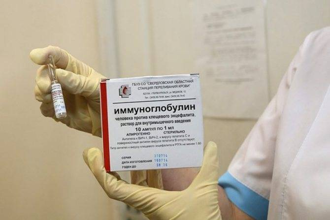 Прививка иммуноглобулина при укусе клеща от энцефалита
