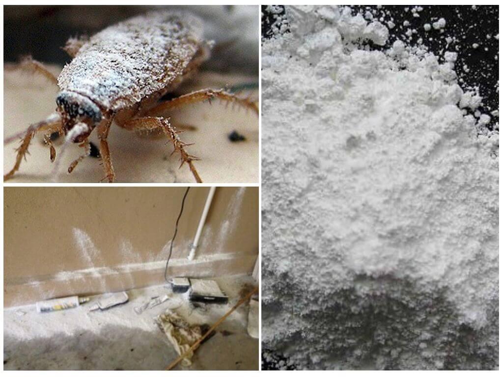 Чистый дом от тараканов: применение спрея, дуста, геля и ловушек