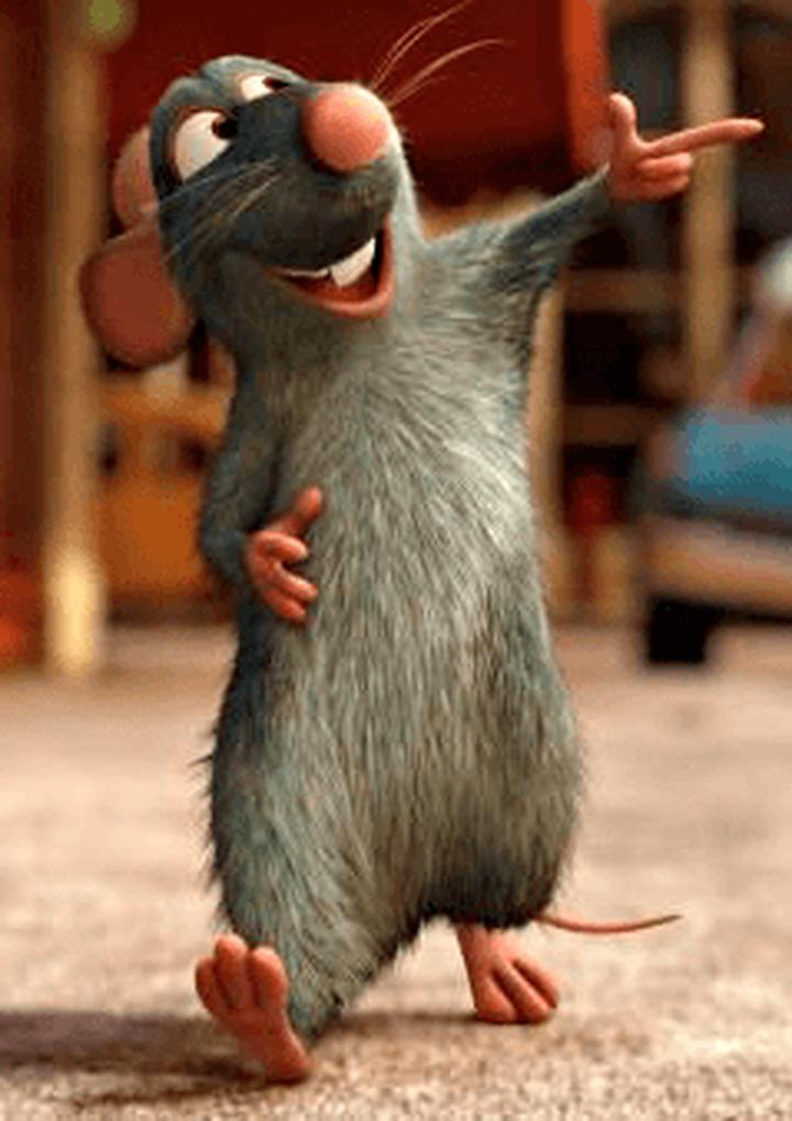 Строение мышей