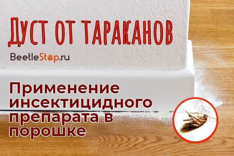 Топ-15 самых лучших и эффективных средств от тараканов