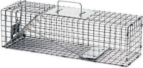 Выбор и изготовление своими руками ловушек для крыс