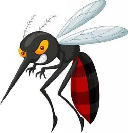 Комары: до какого этажа долетают кровососы в поисках жертвы?