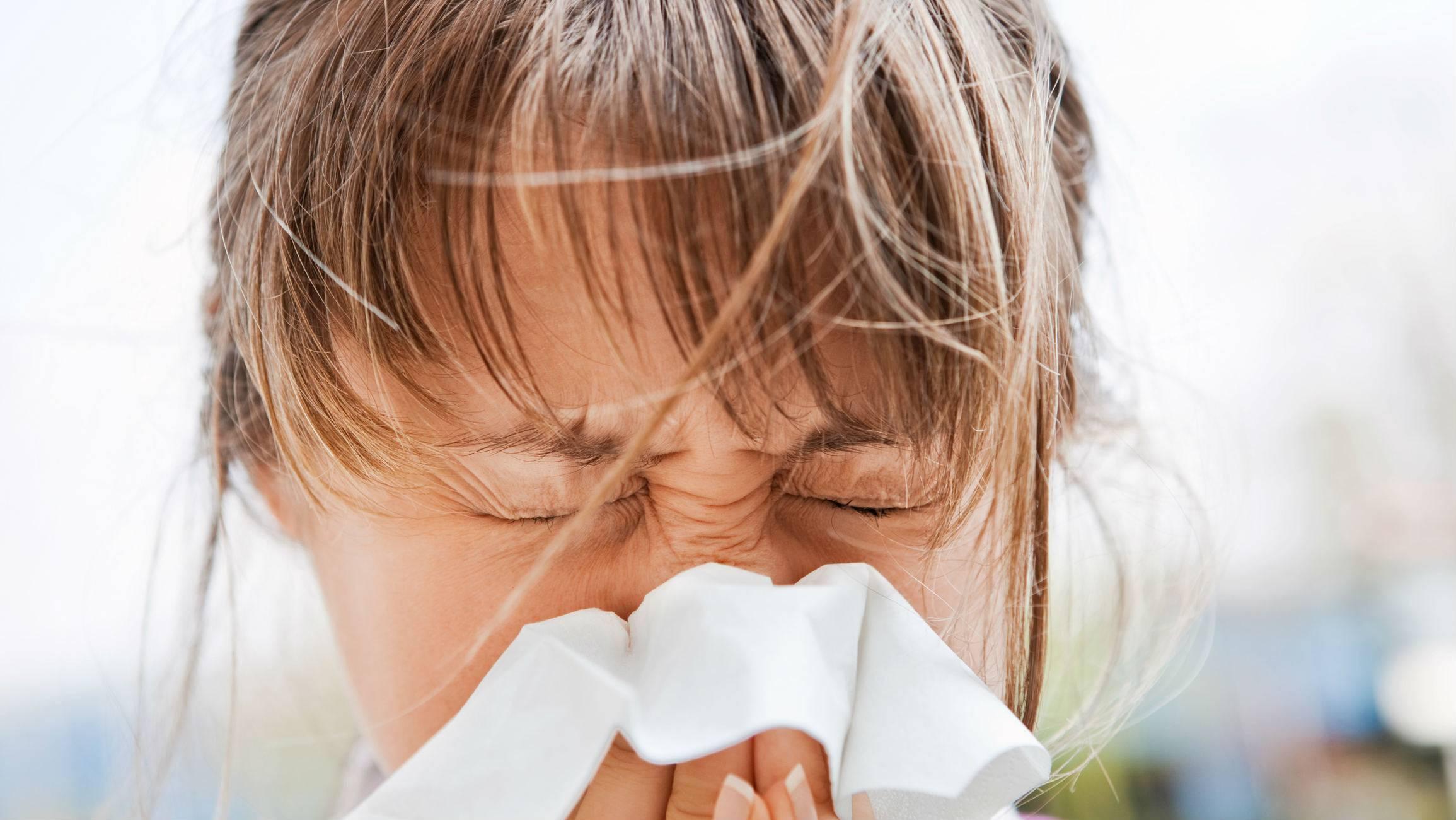 Как избавиться от пылевых клещей в домашних условиях: самые эффективные методы