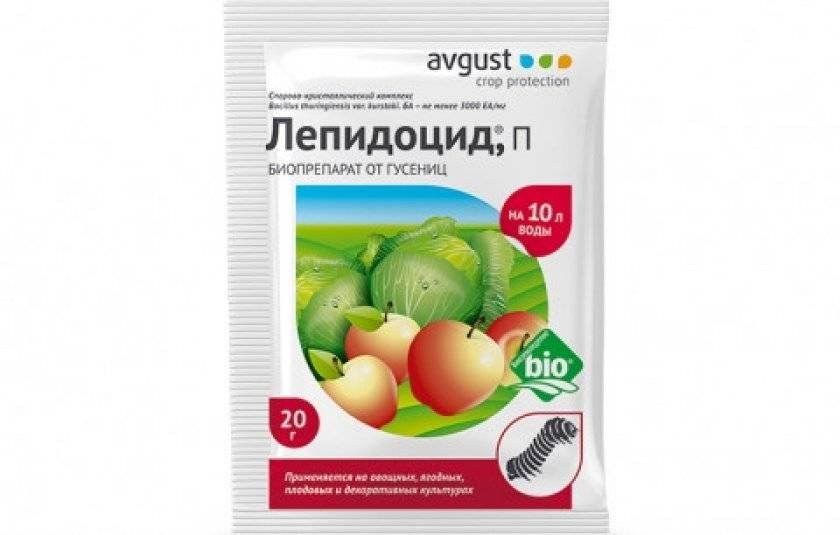 Основные вредители томатов и способы борьбы с ними