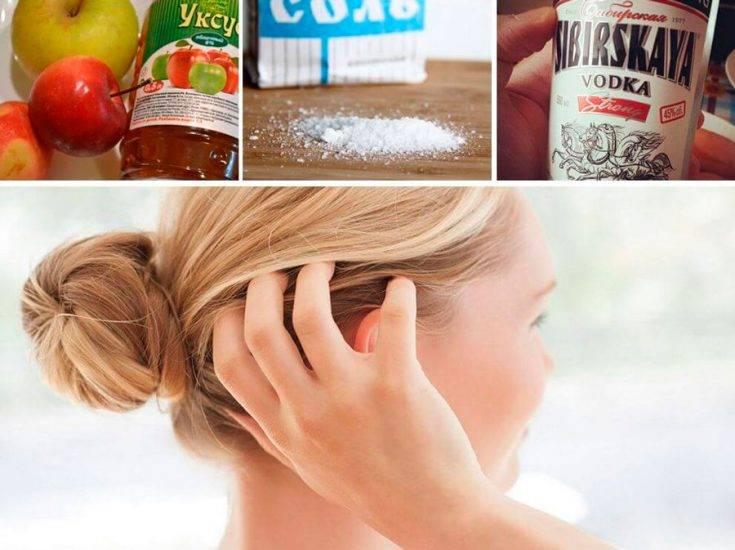 Уксус от вшей и гнид: рецепты, отзывы и советы по применению