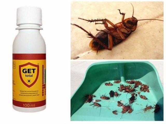 Гет от тараканов — действие, эффективность, меры безопасности, профилактика