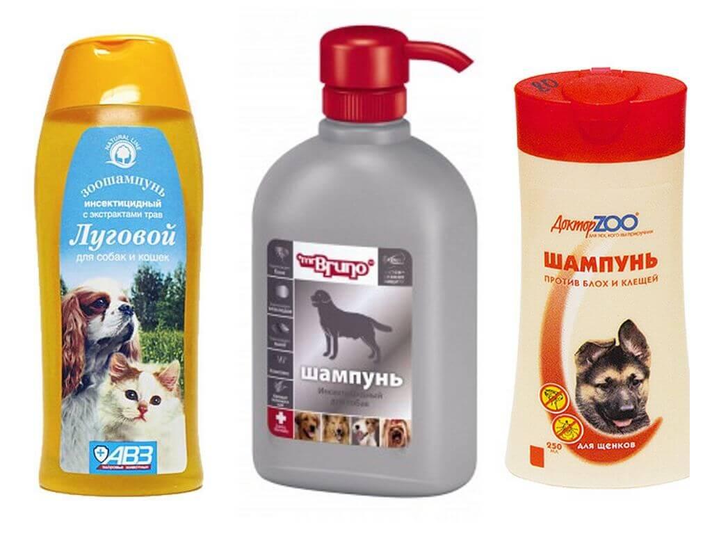 11 лучших средств для собак от блох и клещей (капли, таблетки, спреи, ошейники)
