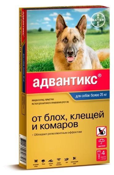 Средства от клещей для собак — выбираем самые эффективные