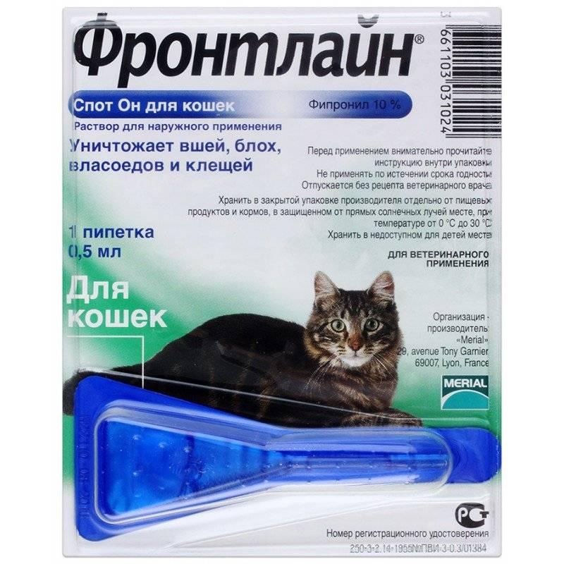 Так ли эффективен фронтлайн для кошек и котов? отзывы