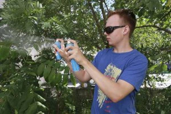 Лучшее средство защиты от комаров — ультразвуковой отпугиватель