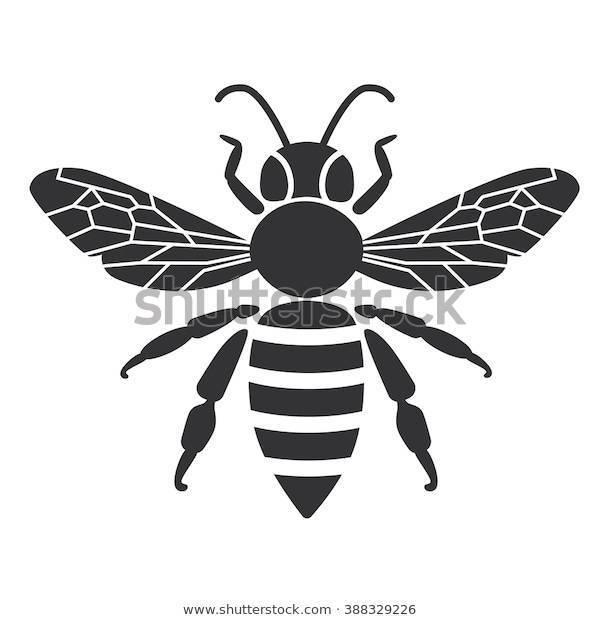 Медоносная пчела и обыкновенная оса